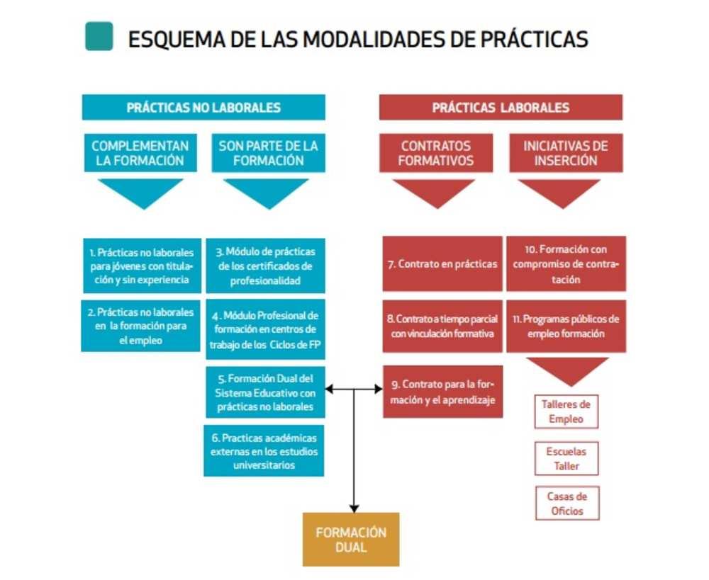 ¿Qué son las prácticas no laborales en la Formación Profesional para el Empleo y qué diferencias hay con respecto a otras modalidades?