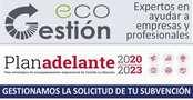 Eco Gestión | Subvenciones - Comisiones abusivas - Informes periciales