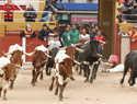 Bonito broche para el último encierro de las Ferias y Fiestas 2019 de Guadalajara, buenas carreras y ninguna incidencia