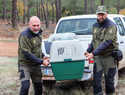 Liberados dos buitres leonados  en pleno corazón del Parque Natural del Valle de Alcudia y Sierra Madrona