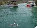 Este  sábado se ha celebrado la XIX Edición de la Procesión Marinera Lago de Bolarque