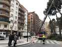 El alcalde asegura que el Ayuntamiento ya está trabajando para garantizar la seguridad de las personas y restablecer la normalidad en la zona afectada por la caída de un árbol en Simón Abril