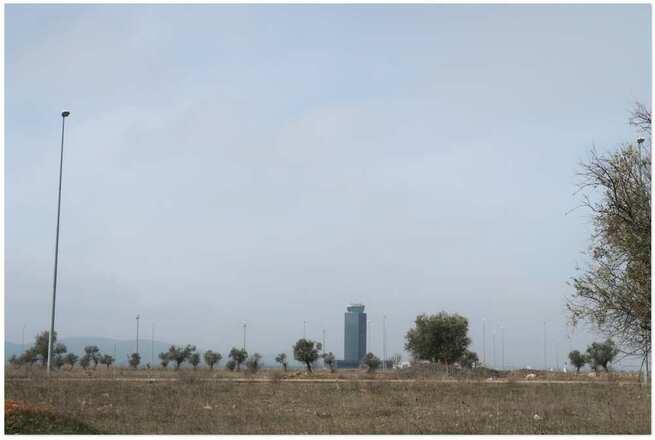 """El Aeropuerto de Ciudad Real establece un régimen de ayudas a los agricultores para la implantación del programa ambiental en la ZEPA del """"Campo de Calatrava"""""""