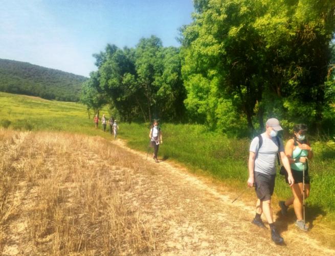 Castilla-La Mancha celebra el Día Mundial del Medio Ambiente con numerosas rutas y actividades gratuitas abiertas al público en distintos espacios naturales de la región