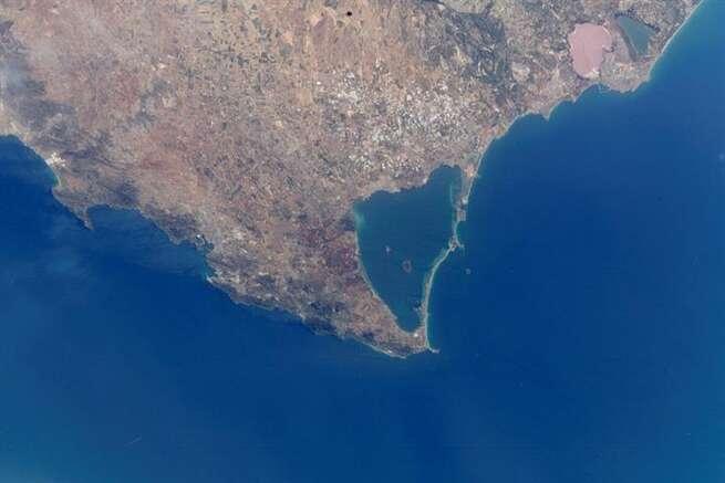 Un informe señala al vertido continuado de nutrientes agrícolas como principal causa de la mortandad masiva de fauna en el Mar Menor