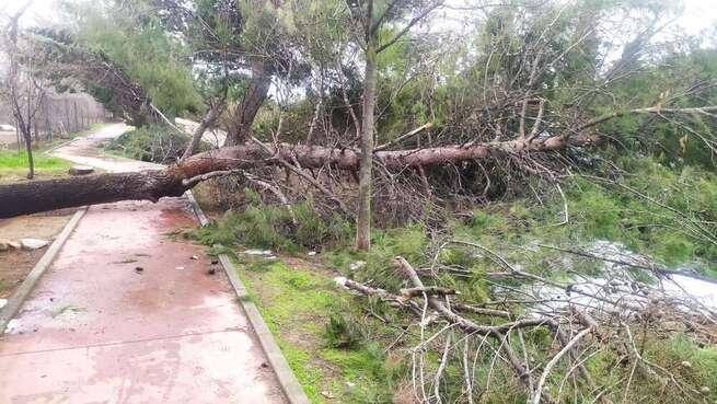 El Gobierno de España destina más de 5 millones de euros para paliar daños ocasionados por temporales en 64 municipios de Castilla-La Mancha