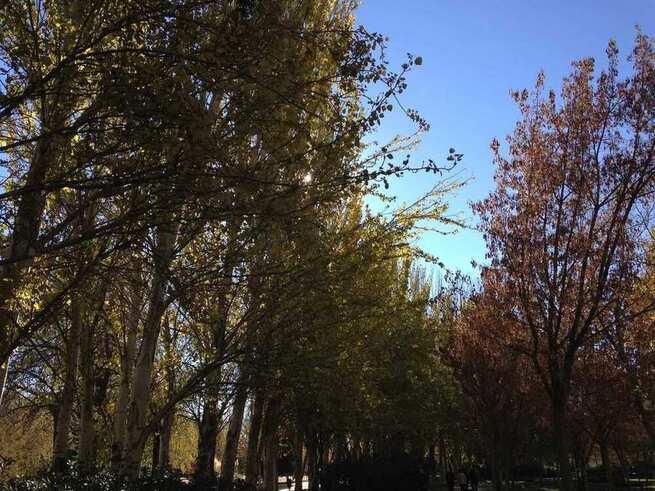 El otoño será más caluroso y seco de lo normal tras un verano 0,9ºC más cálido de lo habitual