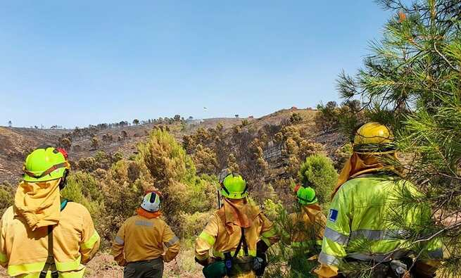 Controlado el incendio de Férez (Albacete), en el que trabajan 12 medios y 50 efectivos