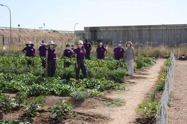 Ocho personas se reciclan profesionalmente como agricultores ecológicos en Torralba de Calatrava