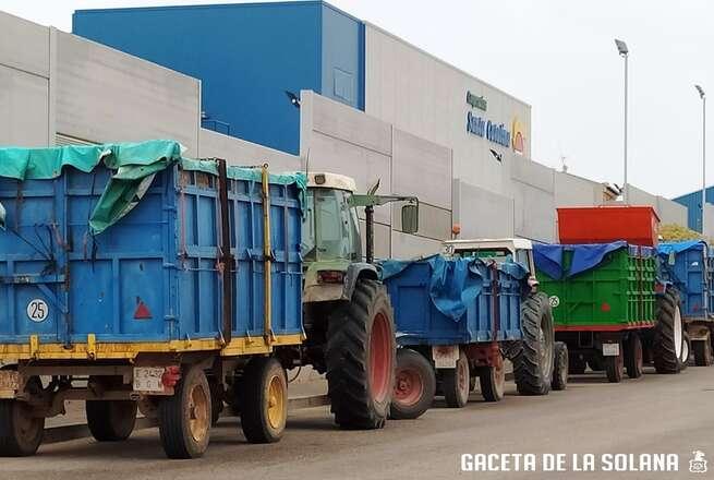 La Cooperativa Santa Catalina de La Solana supera las expectativas de recepción de uva