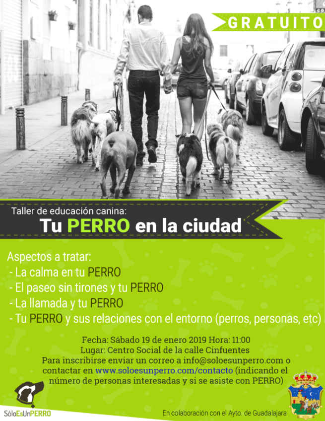 El Ayuntamiento de Guadalajara pone en marcha un nuevo taller de educación canina