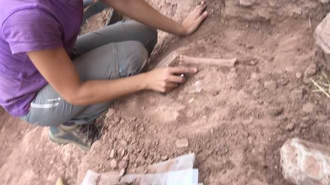 La arqueología de urgencia útil vuelve a Laminium