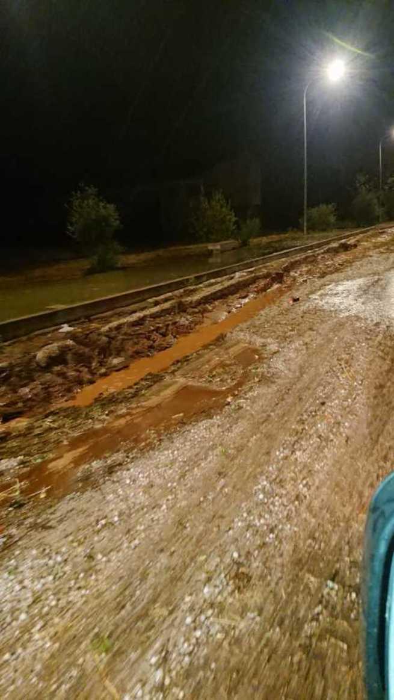 ASAJA Ciudad Real se suma a la petición de zona catastrófica de Infantes y pide que se haga extensible a todos los pueblos afectados
