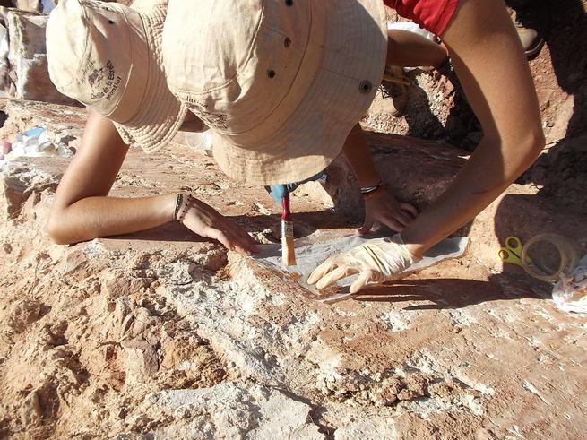 Alumnos de la UCLM participan en la campaña de excavación del Castillo de la Estrella de Montiel