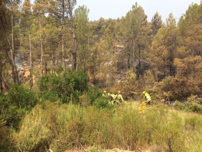 Los trabajos de restauración de la zona afectada por el incendio de Yeste comenzarán el próximo martes