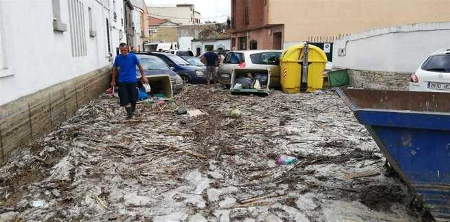 La Diputación de Alicante destina a Cebolla (Toledo) más de 300 libros para la biblioteca afectada por la riada