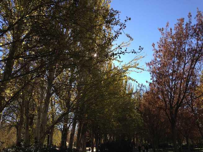 """""""El verano se alarga"""", el otoño será en Castilla-La Mancha """"un poco más cálido y húmedo"""" de lo normal"""