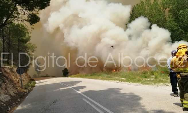 Declarado un incendio en una chopera de La Recueja (Albacete)