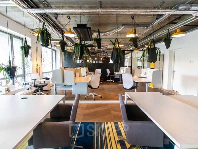 Cómo debe ser el espacio de trabajo u oficina de una startup