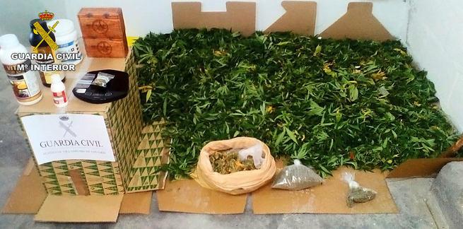 La Guardia Civil detiene en Villarrubia a dos personas por cultivo y tráfico de marihuana
