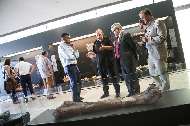 """l Lohuecotitan Pandafilandi, un dinosaurio """"exclusivamente conquense"""" que se puede contemplar en el Museo de Paleontología de Castilla-La Mancha"""