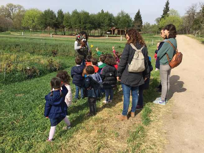 El Gobierno regional impulsa la educación ambiental con una nueva convocatoria de ayudas para transporte escolar que se publica el jueves