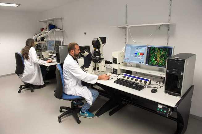 El servicio de Microscopía y Análisis de Imagen de Parapléjicos oferta la cuarta edición de su curso de alta especialización