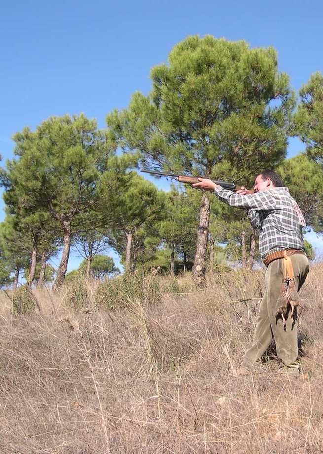 La Federación de Caza de CLM edita un díptico informativo sobre zonas de seguridad, para una caza segura