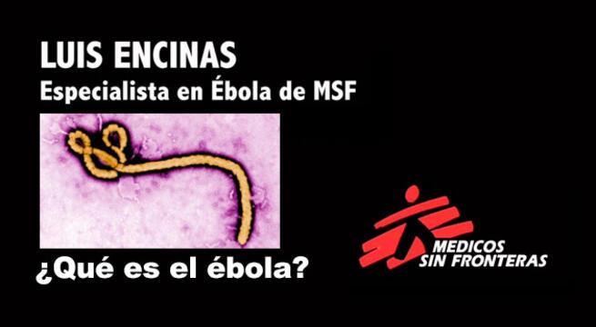 imagen de ¿Qué es el ébola? ¿Cómo se transmite? ¿Cómo se ataja?