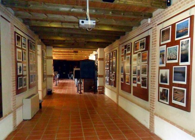 Imagen: Abierta hasta el 31 de julio en Villarrubia de los Ojos una muestra fotográfica sobre los humedales con más de 100 originales