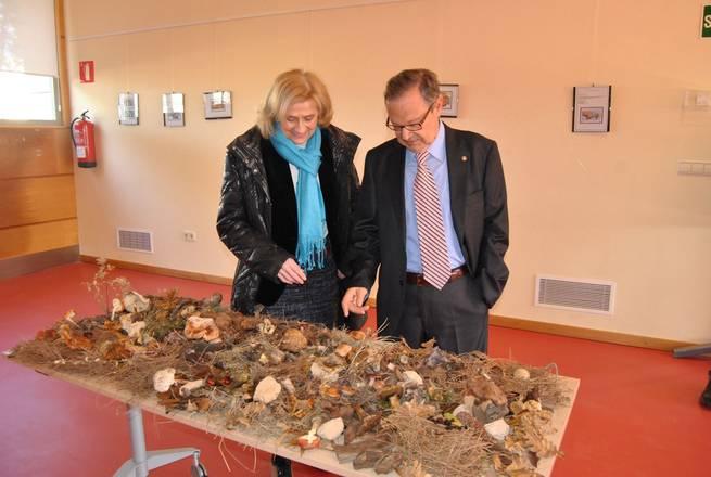 """imagen de La alcaldesa de Albacete visita la exposición fotográfica """"Hongos en la Filatelia Española"""""""