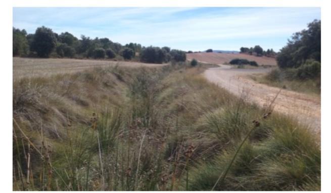 Imagen: La Confederación Hidrográfica del Júcar acondicionará los arroyos Tejero, Del Puente y Rambla Aguachares en Nohales a instancias del Ayuntamiento de Cuenca