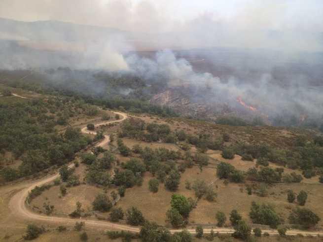 El número de hectáreas quemadas en Castilla-La Mancha se reduce un 85% respecto a 2017