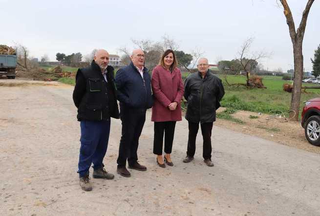 'El Zaque' impulsa un bosque de paulonias en terrenos de la Cañada Real Soriana a la entrada de Manzanares