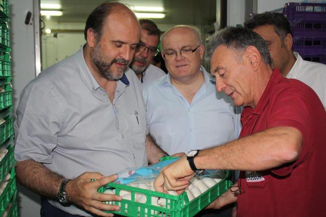 Imagen: El Gobierno regional resalta el papel estratégico del sector del champiñón para la economía de la comarca de La Manchuela