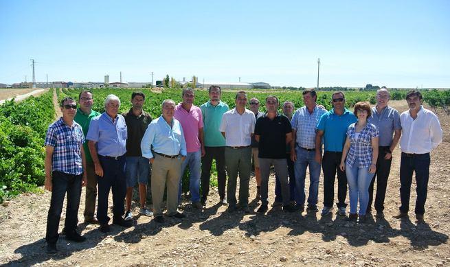 El Gobierno regional augura una buena vendimia con rentabilidad para productores y bodegueros gracias a la modernización del sector