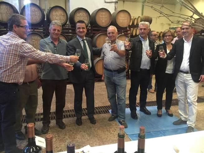 El Gobierno de Castilla-La Mancha reducirá el mínimo permitido para obtener ayudas de reestructuración de viñedo el próximo año