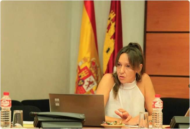 La consejera para la Coordinación del Plan de Garantías Ciudadanas comparece en la Comisión de Asuntos Generales