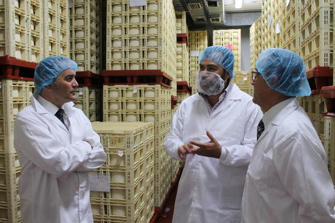 Imagen: Gregorio destaca el aumento de un 11,8% de las exportaciones en Castilla-La Mancha