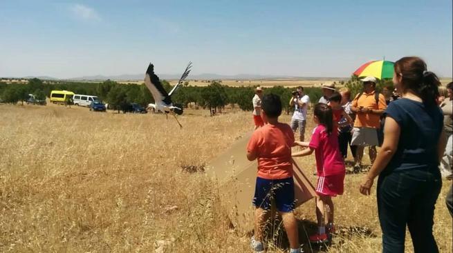 Imagen:  Talleres de piragüismo e identificación de aves, en la Semana Verde de Villafranca