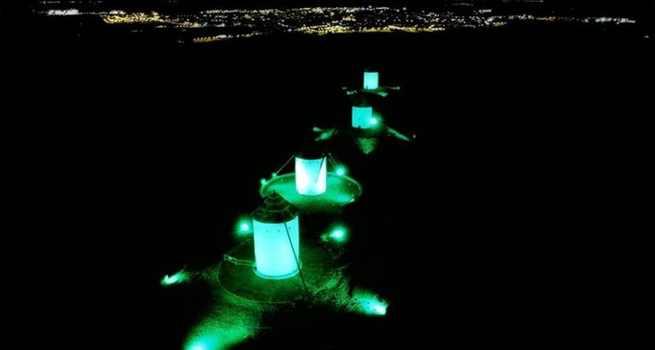 Los molinos y el ayuntamiento de Alcazar de San Juan se iluminarán de verde el Día de la fibrosis Quística