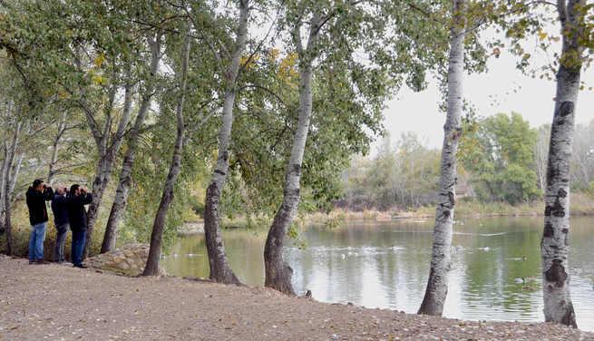 La Reserva Ornitológica Municipal, incluida en el Inventario nacional de zonas húmedas