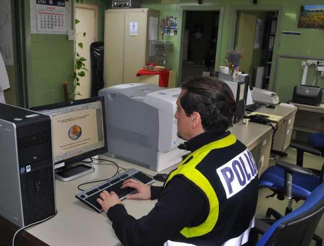 Detenidas cuatro personas por apoderarse de 10.000 kilos de aceituna e intentar venderlas en Almodóvar del Campo