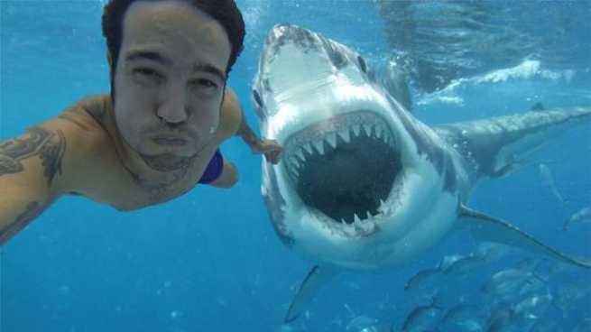 Imagen: Los selfies provocan más muertes que los tiburones
