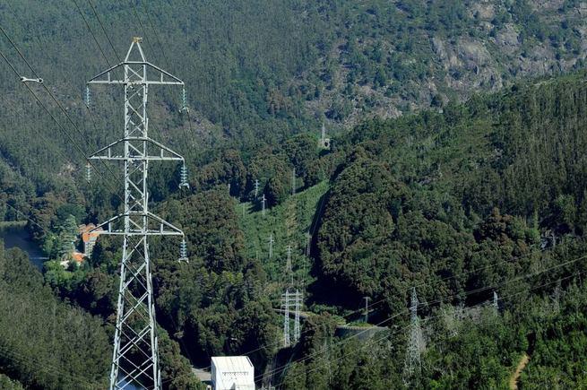 Imagen: Unión Fenosa Distribución invierte 850.000 euros este año en trabajos de limpieza, tala y poda en sus líneas eléctricas de Castilla-La Mancha