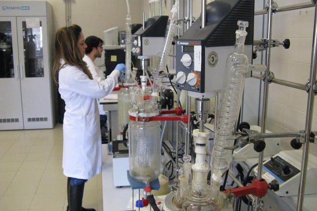 Imagen: La ingeniería química, la ingeniería civil y las ciencias agrícolas de la UCLM, entre las mejores del mundo