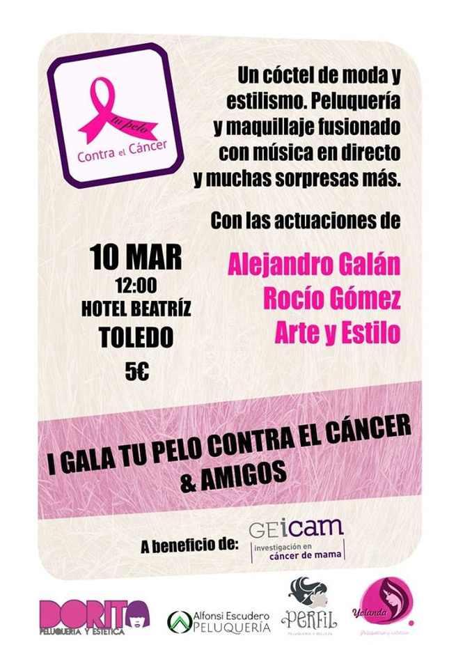 Una gala benéfica reunió a los toledanos para recaudar fondos para el Grupo GEICAM de investigación en cáncer de mama