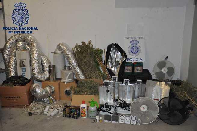 """La Policía Nacional desmantela en Valdepeñas un cultivo de """"indoor"""" de marihuana que estaba asentado en un chalé de la población"""