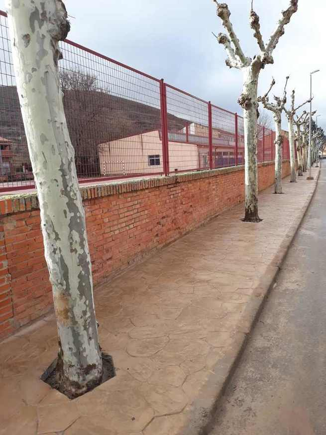 Finalizada la renovación de aceras en la calla Santa Bárbara de Sigüenza