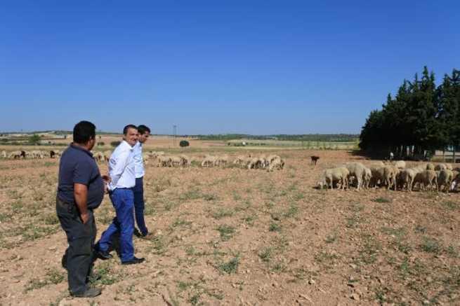 El Gobierno regional abona hoy 6,7 millones de euros para la mejora de explotaciones agrícolas y ganaderas